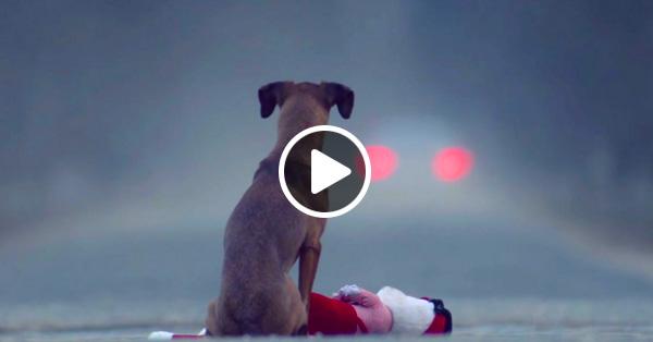 «Подарок» — видео, которое заставило наше сердце сжаться