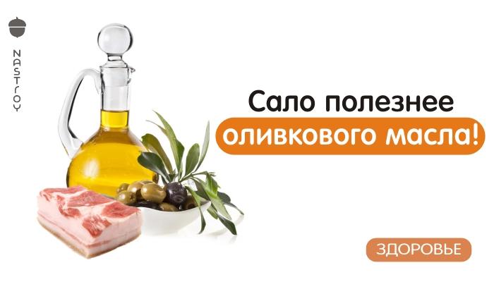 Сало полезнее оливкового масла! Вот что сказали по этому поводу ученые…