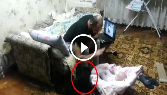 Отец ругал малыша. Внезапно на 0:15 появился кот и сделал ЭТО…