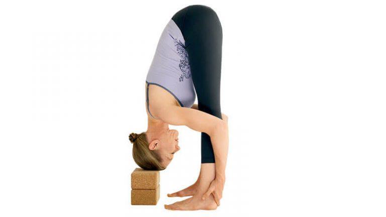 Йога для улучшения тока лимфы: 8 максимально эффективных асан