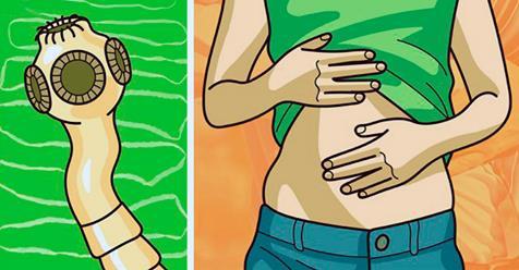 Избавиться от ленточных червей и предотвратить рецидивы: 5 действенных рекомендаций!