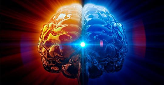 Серотонин: 5 способов повысить его уровень в мозге для улучшения памяти, настроения и не только!