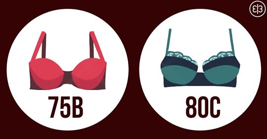 Если вы носите один из этих размеров бюстгальтера – вы не умеете выбирать белье! И вот почему это стоит исправить!