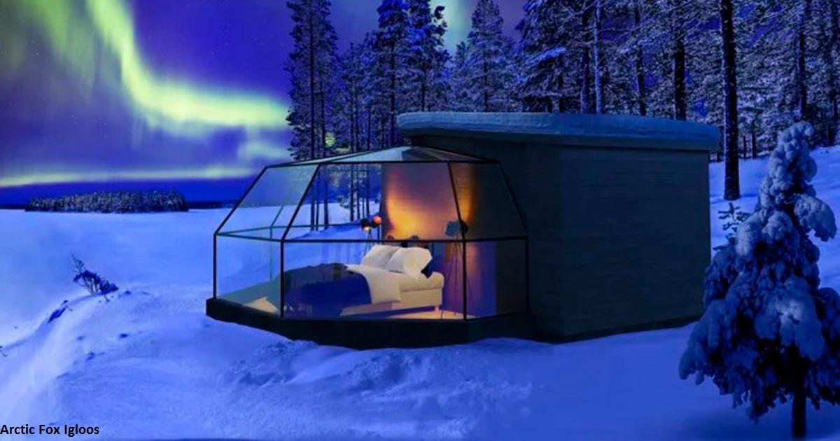 Эти стеклянные иглу дают лучший в мире способ смотреть на северное сияние