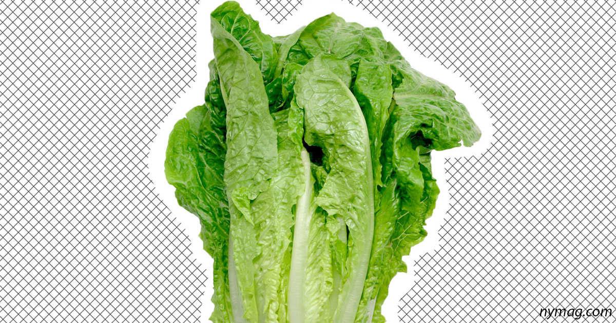 8 правил, которые помогут вам хранить овощи и фрукты как можно дольше