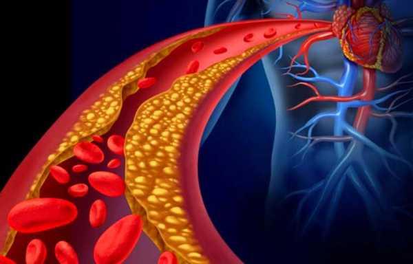 Ешь их больше – живи дольше! Эти продукты прочистят артерии и защитят от сердечного приступа.