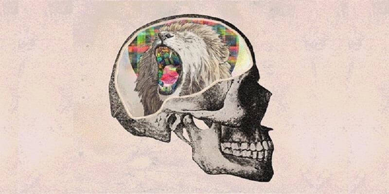 Знание этих 6 законов психологии изменит вашу жизнь