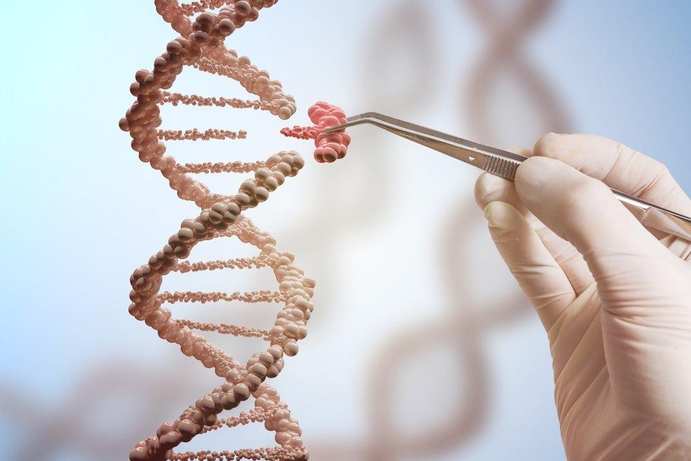Отстаньте от полных людей: они такие из-за генов, а не от ″лени″
