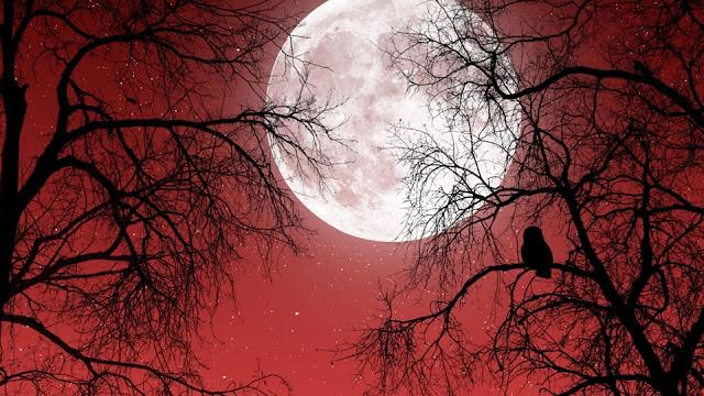 Полнолуние 14 Октября: Время для Всех знаков зодиака, когда Судьба может дать шанс Возродить старые отношения