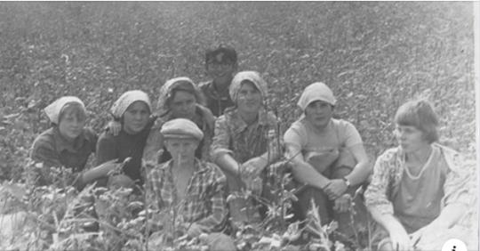 Как в СССР заставляли трудиться школьников