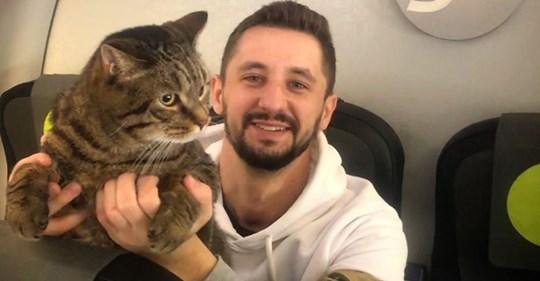 «Маленький кот меняет правила больших людей»: кот Виктор не похудел, но полетит в Москву в салоне самолёта