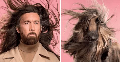 Эти фотографии доказывают, что собаки похожи на своих хозяев