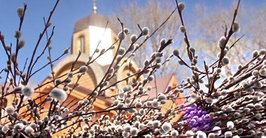 12 апреля большой праздник — Вербное воскресенье. Что нужно сделать в этот день всем христианам