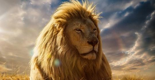 30 причин, почему никто не может жить без Львов