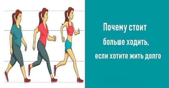 Почему стоит больше ходить, если хотите жить долго