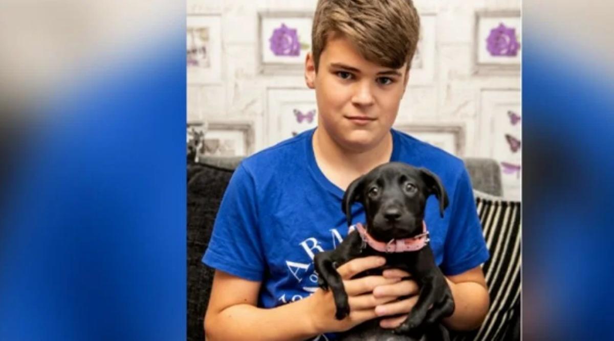 Подростка обижали в школе, выбраться из отчаяния ему помог шестилапый щенок