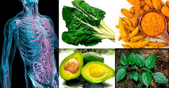Вот как активизировать регенерацию нервов, клеток печени, сердца, суставов, костей и гормонов