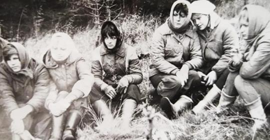 Юность СССР: как мы ездили в колхозы на картошку