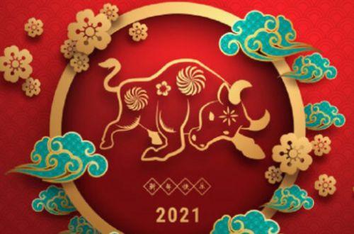 Женщин каких знаков Зодиака в 2021 году ждет счастливое замужество?