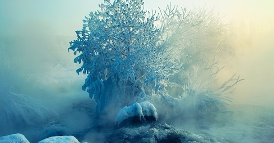 Январь – время больших переворотов Судьбы для трех знаков Зодиака