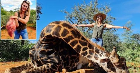 Женщина подарила своему мужу на Валентина сердце жирафа