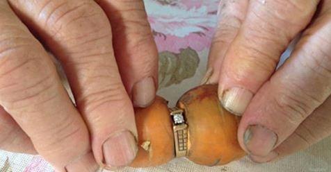 Канадка потеряла бриллиантовое кольцо и нашла его спустя 13 лет. на морковке