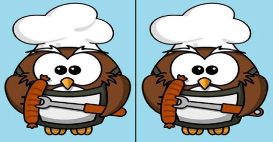 Найдете между птичками 4 отличия?