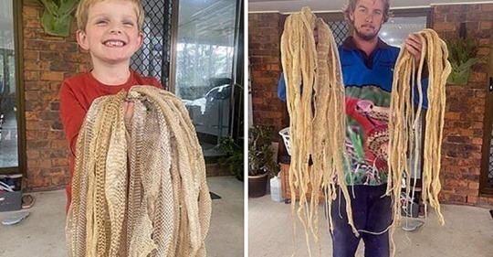 Змеелов рассказал австралийцам, что они в доме вовсе не одни