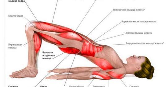 Проработайте все мышцы этими 3-мя упражнениями