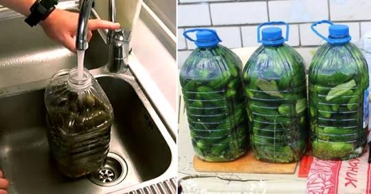 «Свадебные» малосольные огурчики: рецепт хрустящих овощей без кипячения