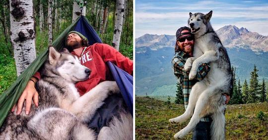 Я всегда путешествую со своим псом Локи, потому что ненавижу, когда собак держат взаперти