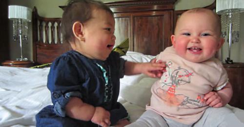 Это самая милая беседа малышей которую я видел. Какие же они лапули