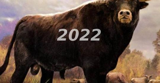 Славянский гороскоп на 2022 год по Знакам