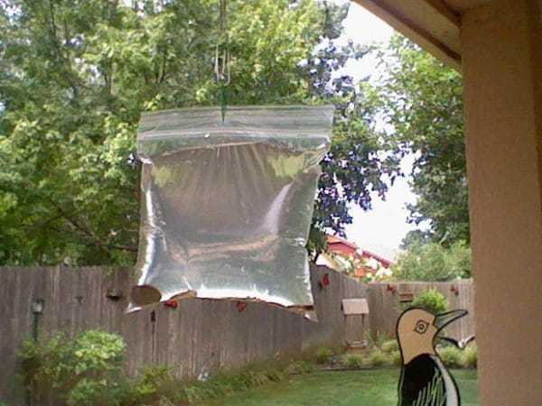 Гениальное устройство, чтобы избавиться от надоедливых мух и комаров!