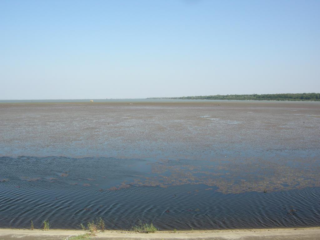 Варнавинское водохранилище – особенности